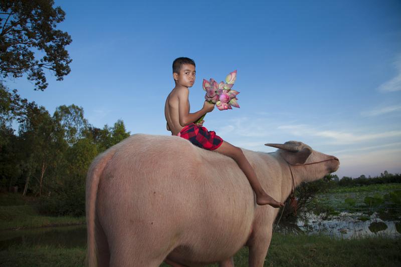 A Buffalo Boy No.2_Photography_90cmx120cm_2013