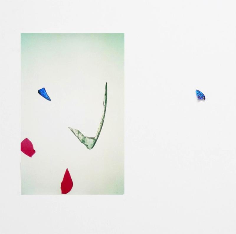 mimosa-Iron Butterfly, 2013